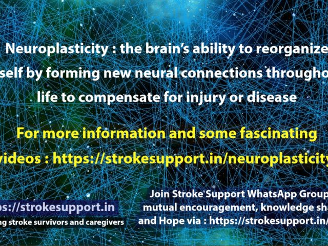 Neuroplasticity- hope for the stroke affected