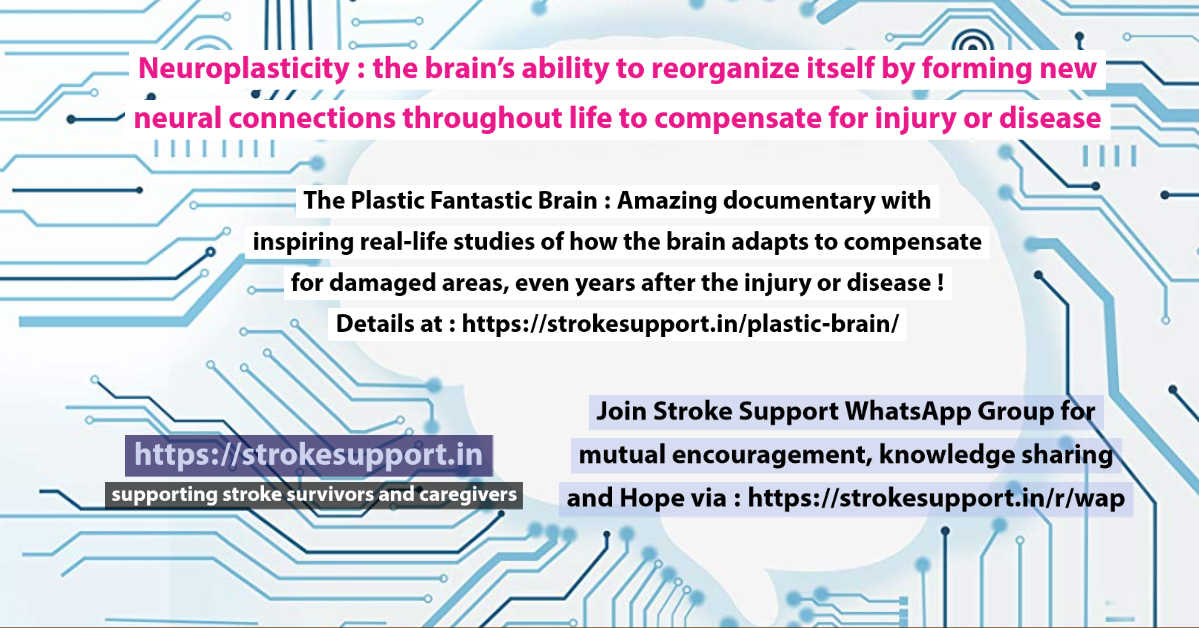 The Plastic Fantastic Brain- amazing documentary on neuroplastcity